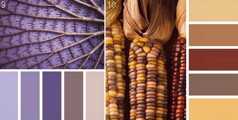 коричневый цвет с какими цветами сочетается в интерьере стоимость